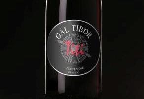 "Gál Tibor Egri Pinot Noir Section ""Titi"" 2007"